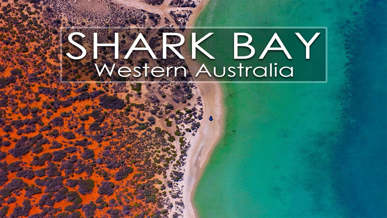 Shark Bay | where the desert meets the sea, Franscois Peron NP