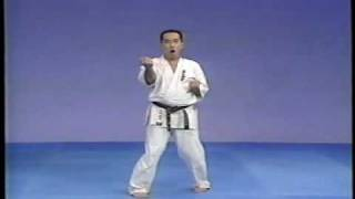 karate kyokushin sanchin kata