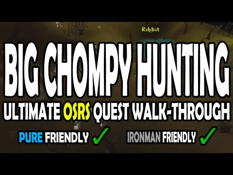 [OSRS] Big Chompy Bird Hunting Quest Guide For Pures On Old School RuneScape