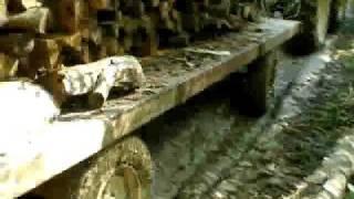 Allons au bois en Fiatagri