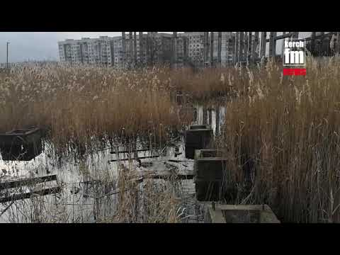 Kerch.FM: Пруд в Керчи хотят закатать в асфальт