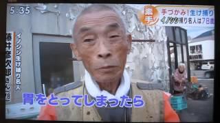 説明 素手でイノシシを生け捕りにする和歌山県の78歳の男性.