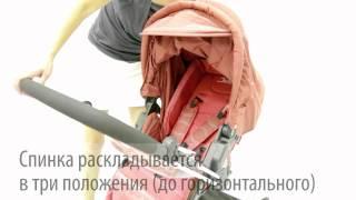 Обзор коляски Jetem Carrera(Коляска 2в1 Jetem Carrera: - Коляска Carrera сочетает в себе инновационный дизайн и все преимущества классической..., 2012-08-18T16:07:05.000Z)