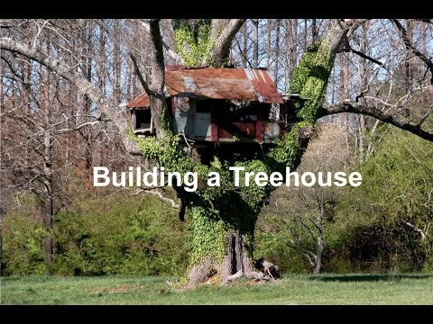Things I wish I knew before building a Treehouse – Part 1