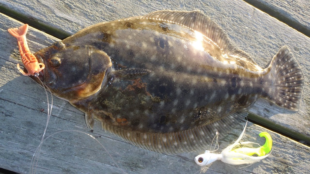 This Flounder Fishing Technique Could Be The Best Ever (John Skinner)