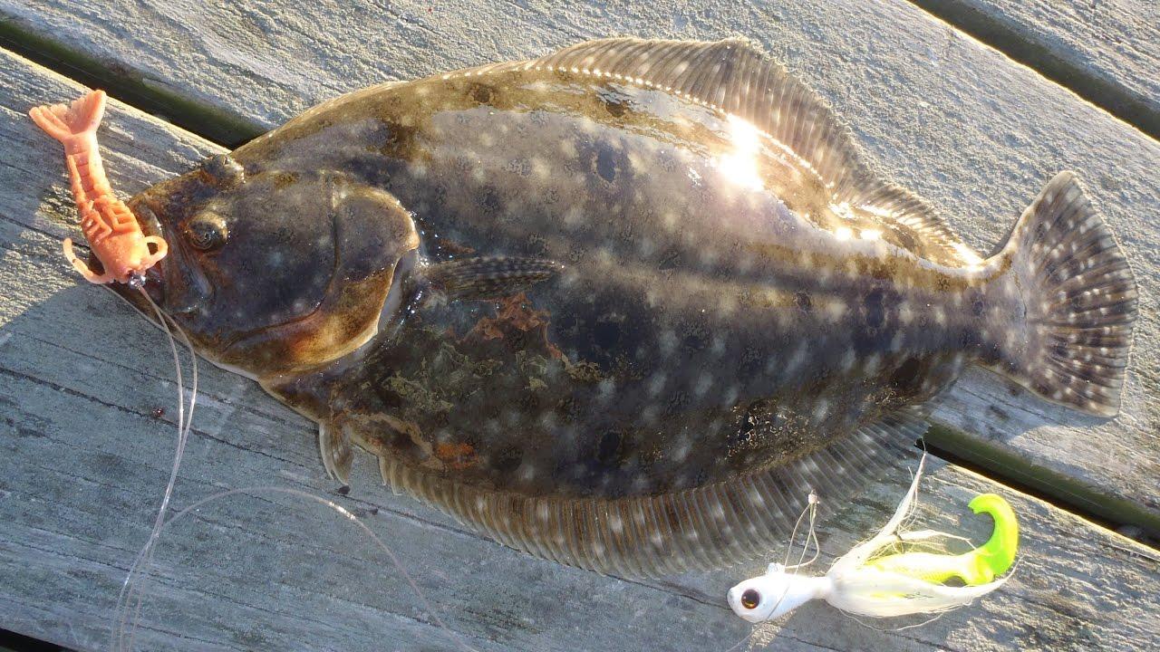 Dock and pier fishing for flounder fluke youtube for John skinner fishing