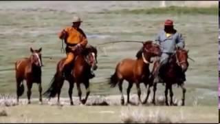 为什么会有外蒙古?外蒙古独立的真正原因是什么?内外蒙古的区别  腾飞...