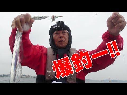 親父���屋�太刀魚爆釣‼