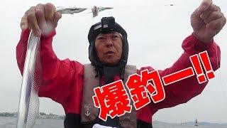 親父と名古屋で太刀魚爆釣‼