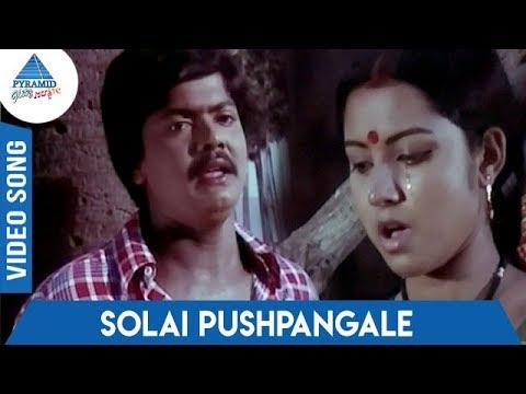 Ingeyum Oru Gangai Tamil Movie Songs | Solai Pushpangale Video Song | Ilaiyaraaja