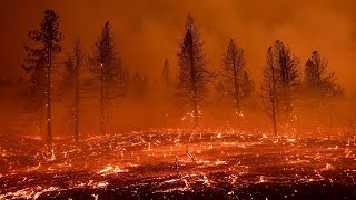 video: Watch: Giant fire tornado northern California wildfire
