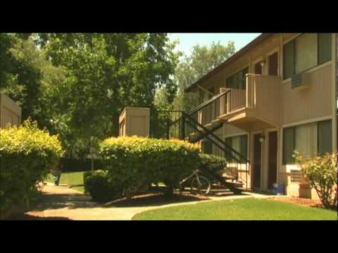 Davis CA Apartments For Rent Cranbrook Apartments Tandem Beauteous 1 Bedroom Apartments In Davis Ca