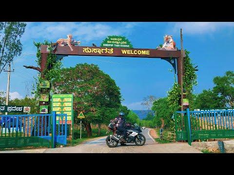 Riding Through Mudumalai Tiger Reserve - Road To Ooty   Tamilnadu  