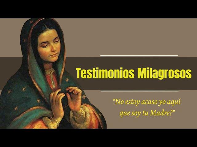Testimonios Milagrosos de una Consagración a María!