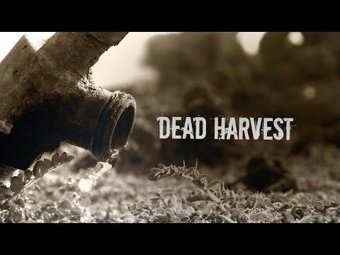 Dead Harvest