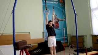 Результат Анатолия - Гимнастическая подготовка (gymnasticscience.com)