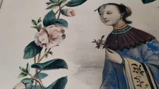 Экскурсия «Цветы и женщины. Азия»