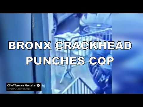Caught on Camera: Bronx Crackhead Punches NYPD Cop at Precinct
