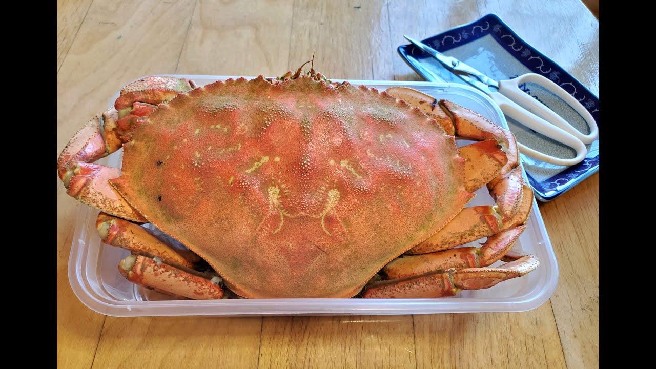 加拿大肉蟹 / hk$300 / 你話抵唔抵? /  Canada Big Crab【20無限】