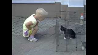 «Поможем животным вместе!»