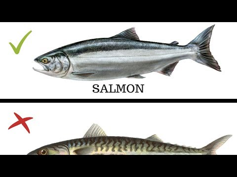 5 Types Of Fish You MUST NEVER EAT!