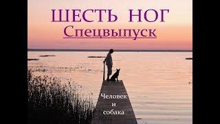 Автор ролика Виталий Тищенко. Шесть ног. человек и собака. Спецвыпуск