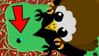 MOPE.IO SMALLEST DRAGON vs 1 TROLLING EAGLE!! // Mope.io Short Story