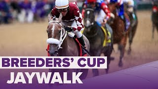 An impressive performance from Jaywalk in the Breeders' Cup Juvenil...