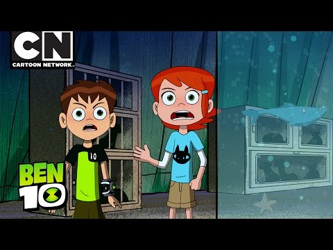 Ben 10 | Animal On the Loose | Cartoon Network