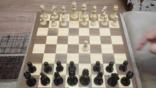 Шахматы. Глупый ферзь. Ловушка для блица.