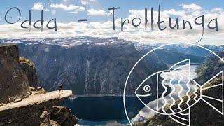 Norway 2015. Odda - Trolltunga