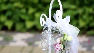 Выездная регистрация брака в Ботаническом саду. Минск