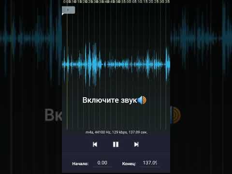 Аудио запись очной ставки