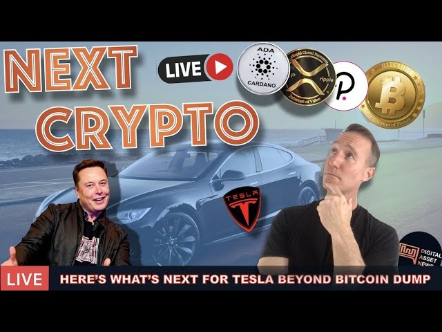 LIVE: WHERE TESLA IS GOING NEXT AFTER BITCOIN (CARDANO, DOT, XRP)