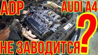 НЕ ЗАВОДИТСЯ Audi A4 ОСНОВНЫЕ ПРИЧИНЫ.