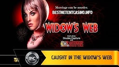 Caught in the Widow's Web slot by High 5 Games