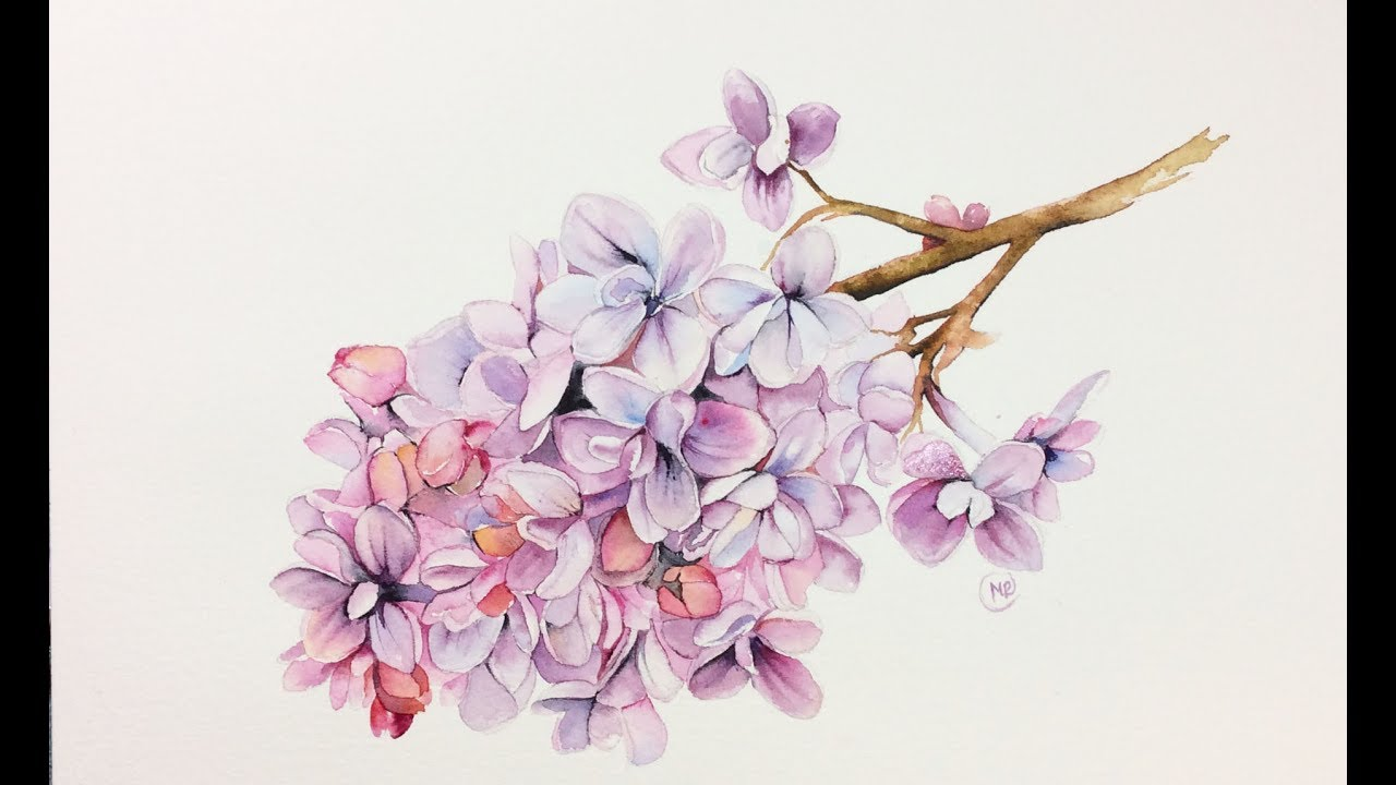 Watercolor Lilac Flowers Painting Demonstration Youtube