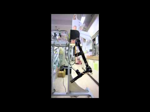 Powered Exoskeleton for Lower Extremity - testing
