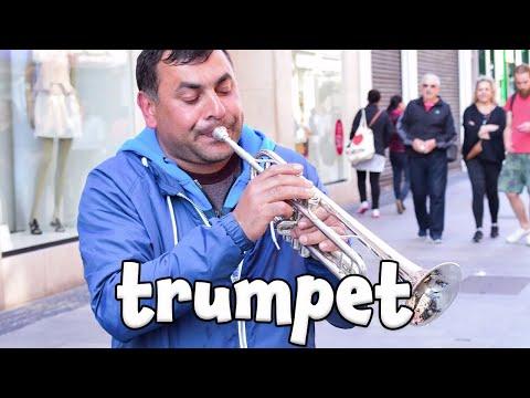 Musical Instrument Sounds!