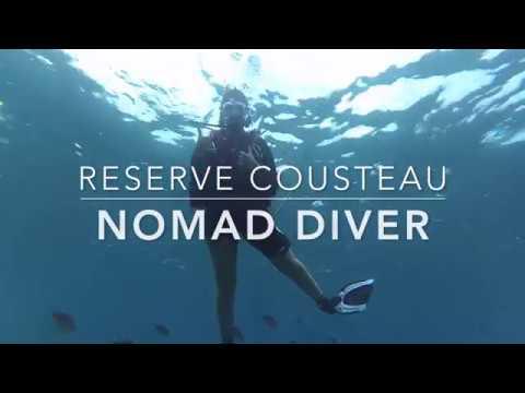 Où plonger en Guadeloupe ? Nomad Diver à la Réserve Cousteau