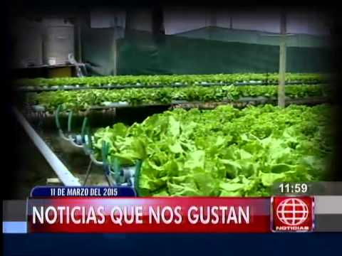 América Noticias: [TITULARES MEDIODIA 11/03/15]
