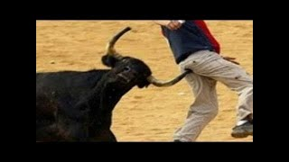 Dangerous Bull Fight Accidents Compilation Lucky and Funny People Fail Video Clips part 4