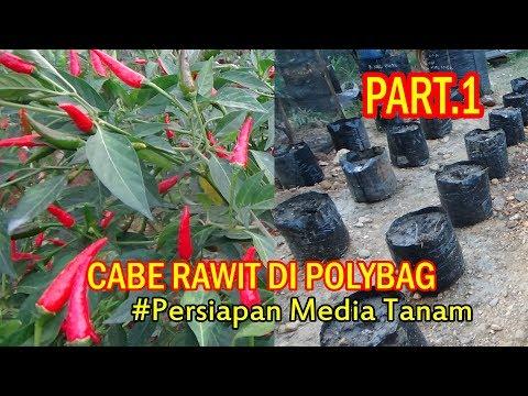 Tutorial Tani Menanam CABE RAWIT Di Polybag ( Persiapan Media) PART 1