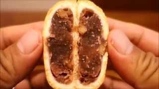KASHIWAYA : KURUMI (Walnuts Sweet bean paste bun)