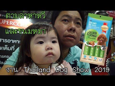 ไณซ์ตามล่าหาหวีและขนมหมาที่มาแรงในขณะนี้ ในงาน Thailand Dog Show 2019