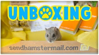 Hamster Mail Unboxing | New Monthly Subscription Box Service! *Early Bird Box Not June Box* thumbnail