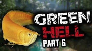 Video Green Hell Indonesia #6 - KOK ADA IKAN ARWANAA .. download MP3, 3GP, MP4, WEBM, AVI, FLV September 2018