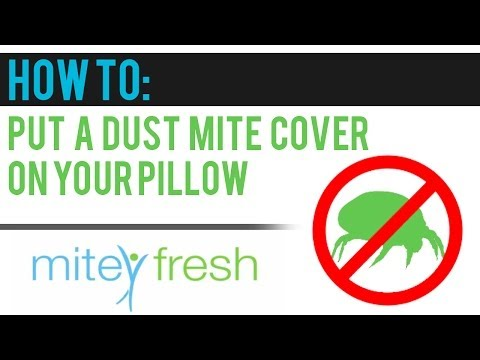 How to put an Allergy Free Dust Mite Cover onto Your Pillow (video 4)