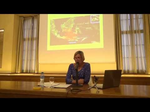 Conférence de Anouchka Vasak : \