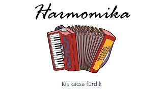 Hangszer ovi - Kis kacsa fürdik (harmonika) / Hungarian folk children song with animals